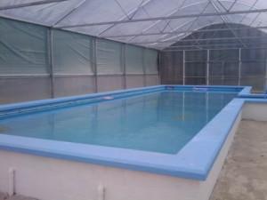 Pool in Oturehua
