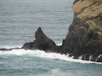 Surf on Cape Saunders