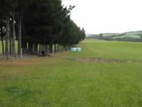 Tree line at start.