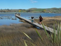 Salt marsh boardwalk. (Bob caption and pic)