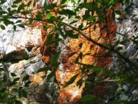 Colour on big rock (Bill pic)