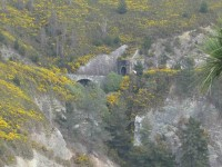 Railway tunnel shot from Mapoutahi Peninsula