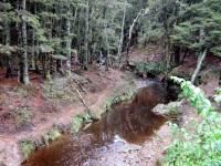 Woodside Creek
