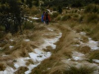 3. Trudging through the snow grass. (Ken pic and caption)