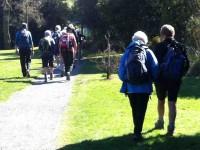 Woodhaugh walk