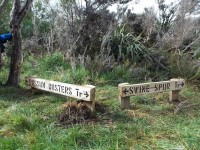 At junction of Possum Busters & Swine Spur. (Ken caption)