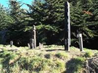 More Maori Graves