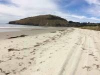 View down sandspit. Potato Point