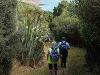 C.3) Pam and Shona heading towards Heywards Pointc