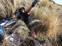 G.7th-- Tussock not as big as thoughtc