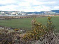 C.4) Contrast between farmland and wetlandc